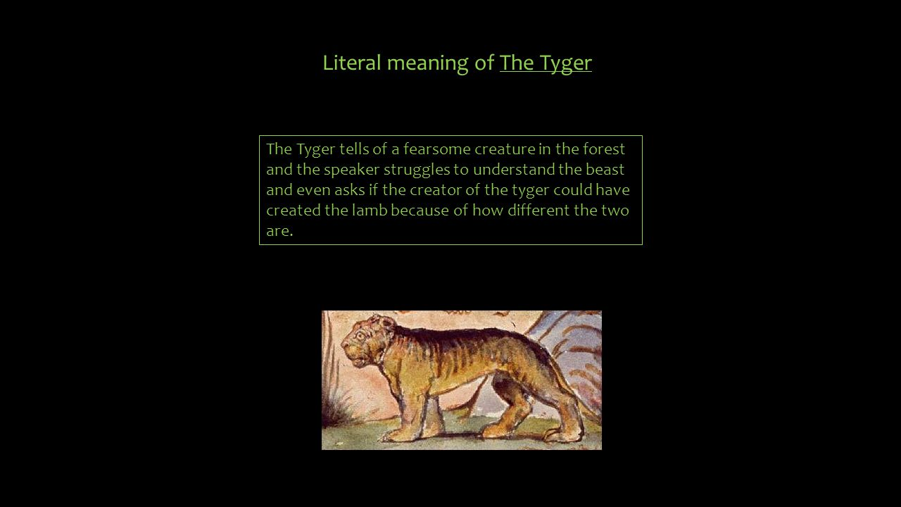 Literal meaning of The Tyger The Tyger tells of a fearsome creature in the forest and the speaker struggles to understand the beast and even asks if t