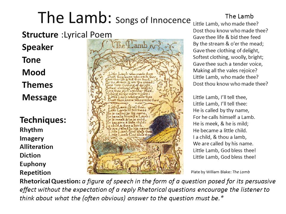 The Lamb: Songs of Innocence Structure :Lyrical Poem Speaker Tone Mood Themes Message Techniques: Rhythm Imagery Alliteration Diction Euphony Repetiti