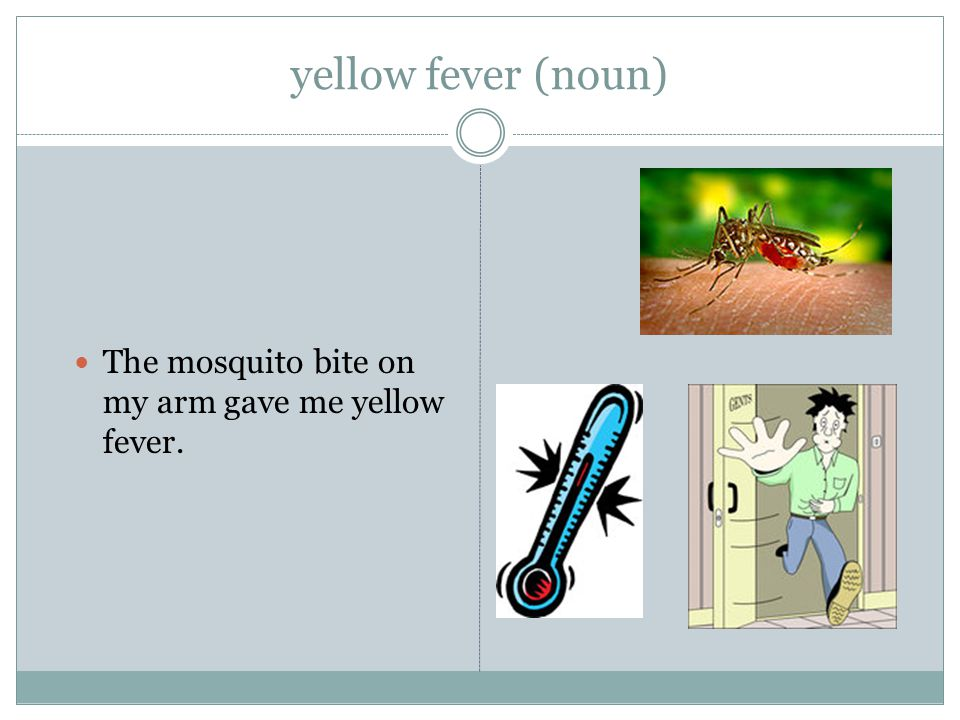 yellow fever (noun) The mosquito bite on my arm gave me yellow fever.