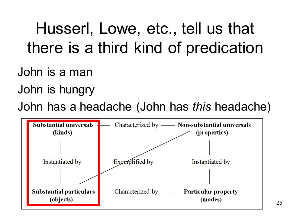Husserl, Lowe, etc., tell us that there is a third kind of predication John is a man John is hungry John has a headache (John has this headache) 26