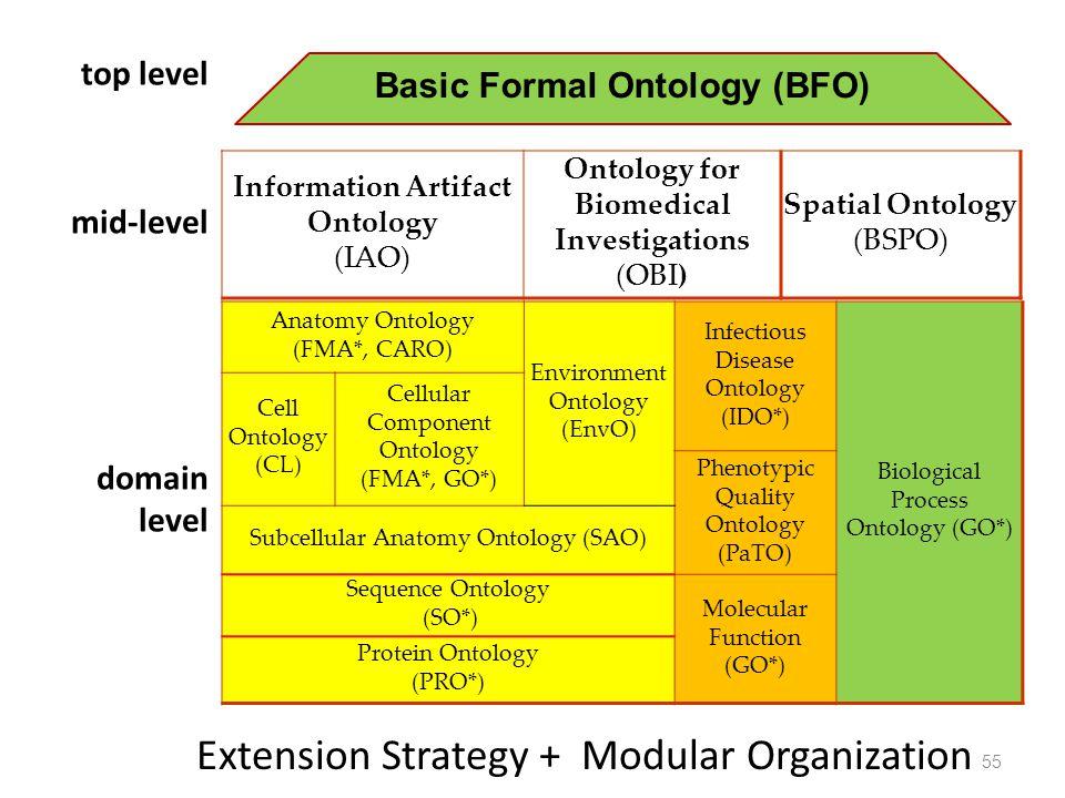 Anatomy Ontology (FMA*, CARO) Environment Ontology (EnvO) Infectious Disease Ontology (IDO*) Biological Process Ontology (GO*) Cell Ontology (CL) Cellular Component Ontology (FMA*, GO*) Phenotypic Quality Ontology (PaTO) Subcellular Anatomy Ontology (SAO) Sequence Ontology (SO*) Molecular Function (GO*) Protein Ontology (PRO*) Extension Strategy + Modular Organization 55 top level mid-level domain level Information Artifact Ontology (IAO) Ontology for Biomedical Investigations (OBI) Spatial Ontology (BSPO) Basic Formal Ontology (BFO)