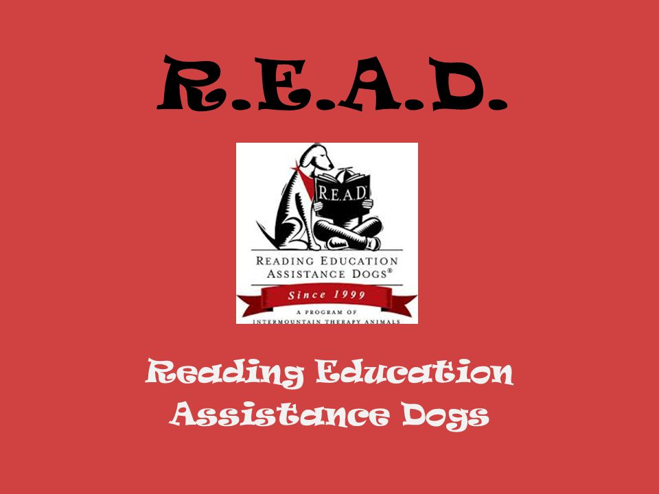 R.E.A.D. Reading Education Assistance Dogs