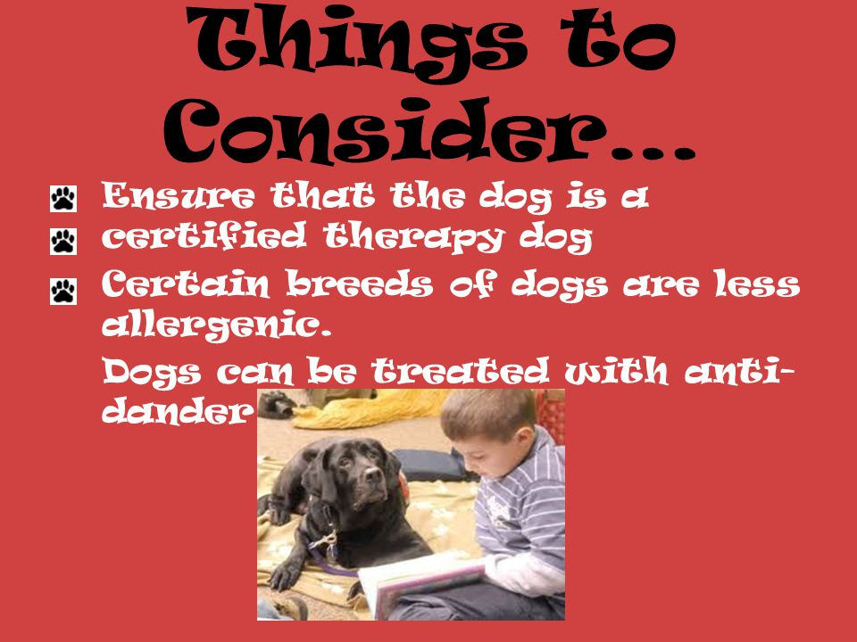 Things to Consider… Ensure that the dog is a certified therapy dog Certain breeds of dogs are less allergenic.