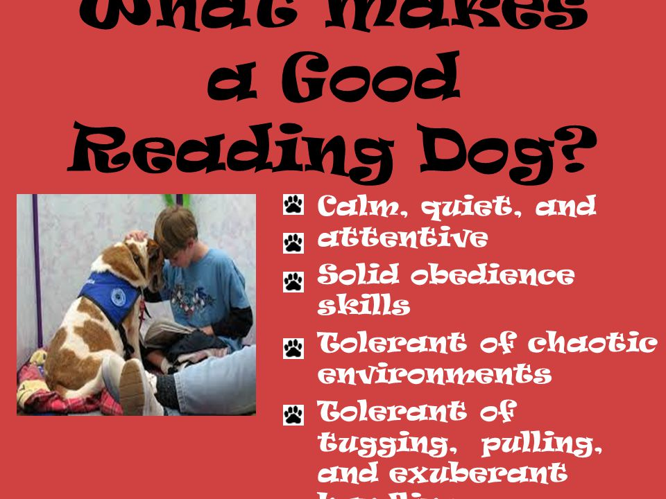 Why Reading Dogs.Kids just love dogs.