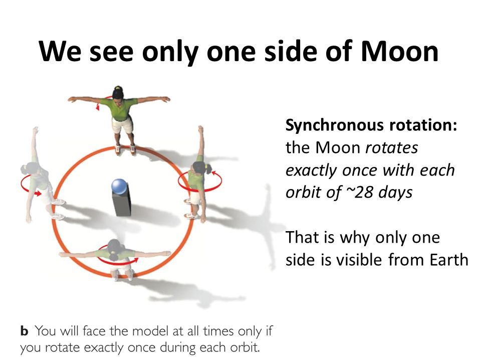 We see only one side of Moon Synchronous rotation: the Moon rotates exactly once with each orbit of ~28 days That is why only one side is visible from
