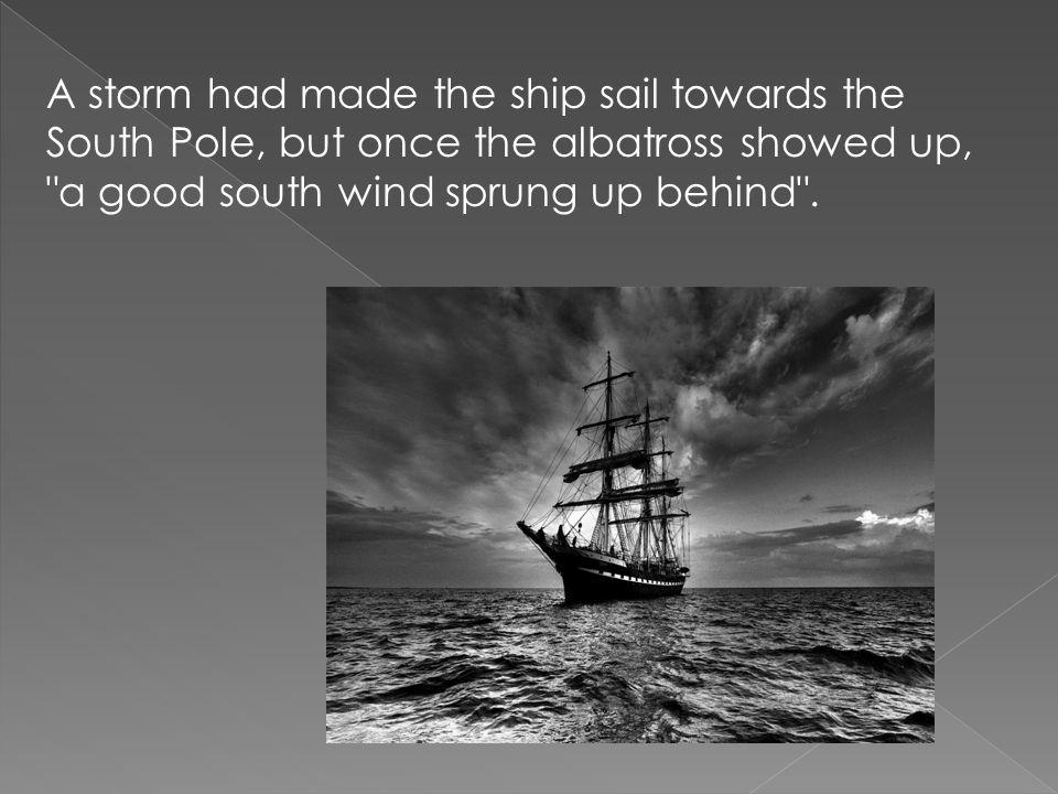 The albatross followed the ship wherever it sailed.