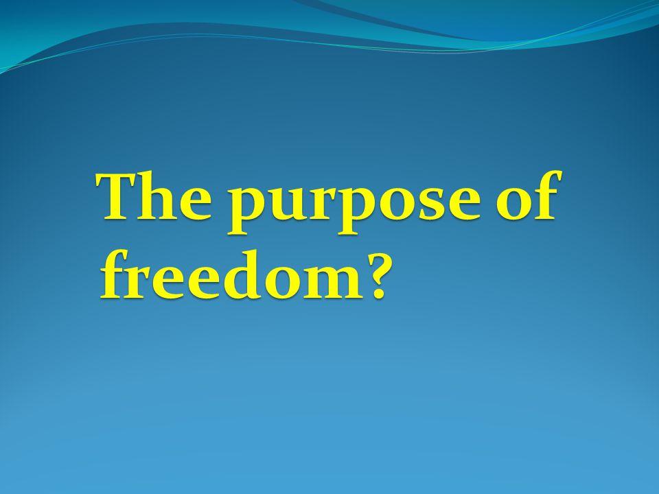 The purpose of freedom? The purpose of freedom?