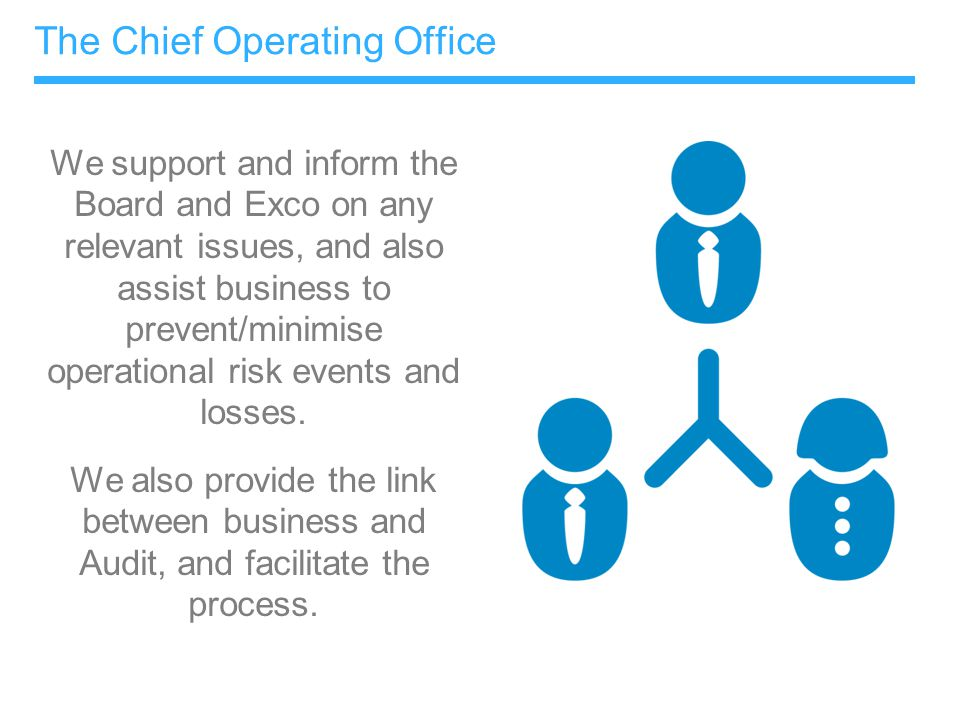 The Chief Operating Office We support and inform the Board and Exco on any relevant issues, and also assist business to prevent/minimise operational r