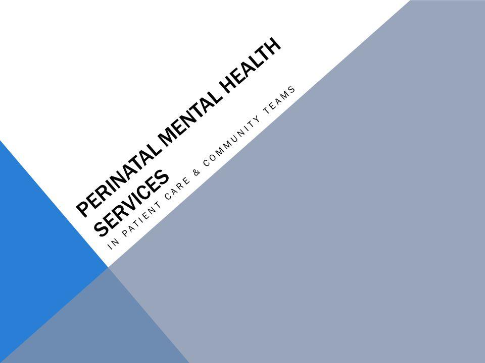 PERINATAL MENTAL HEALTH SERVICES IN PATIENT CARE & COMMUNITY TEAMS