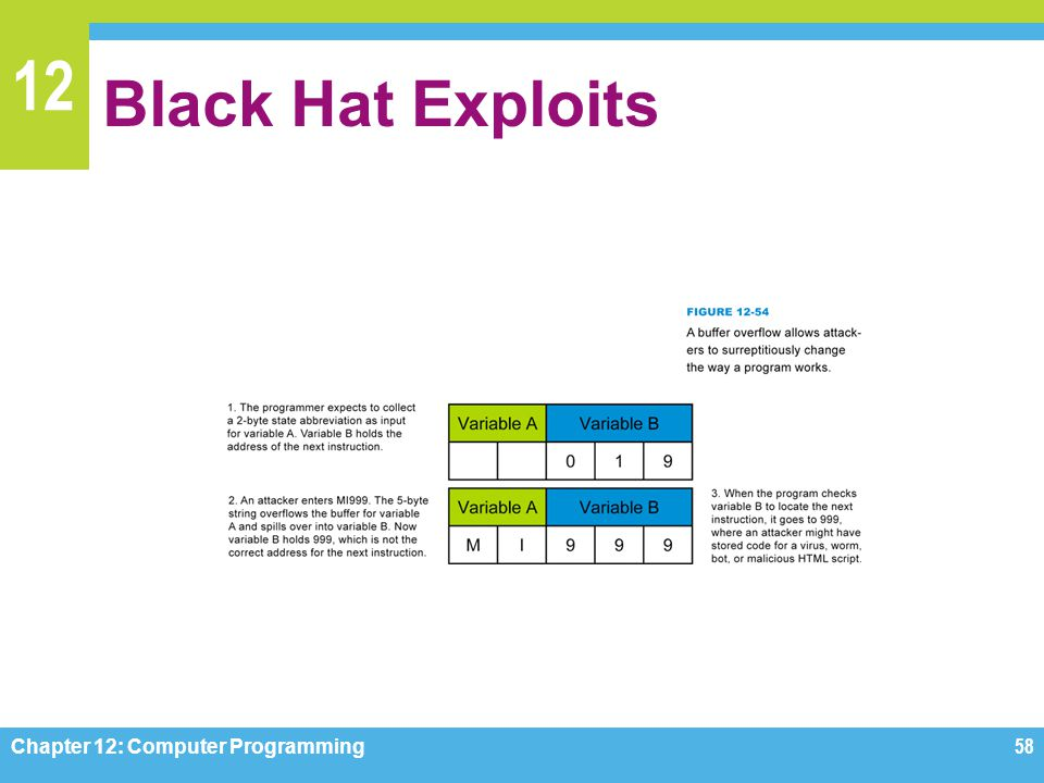 12 Black Hat Exploits Chapter 12: Computer Programming58