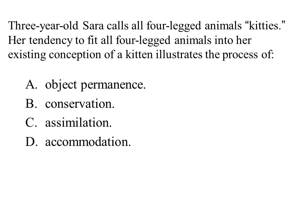 """Three-year-old Sara calls all four-legged animals """"kitties."""" Her tendency to fit all four-legged animals into her existing conception of a kitten illu"""