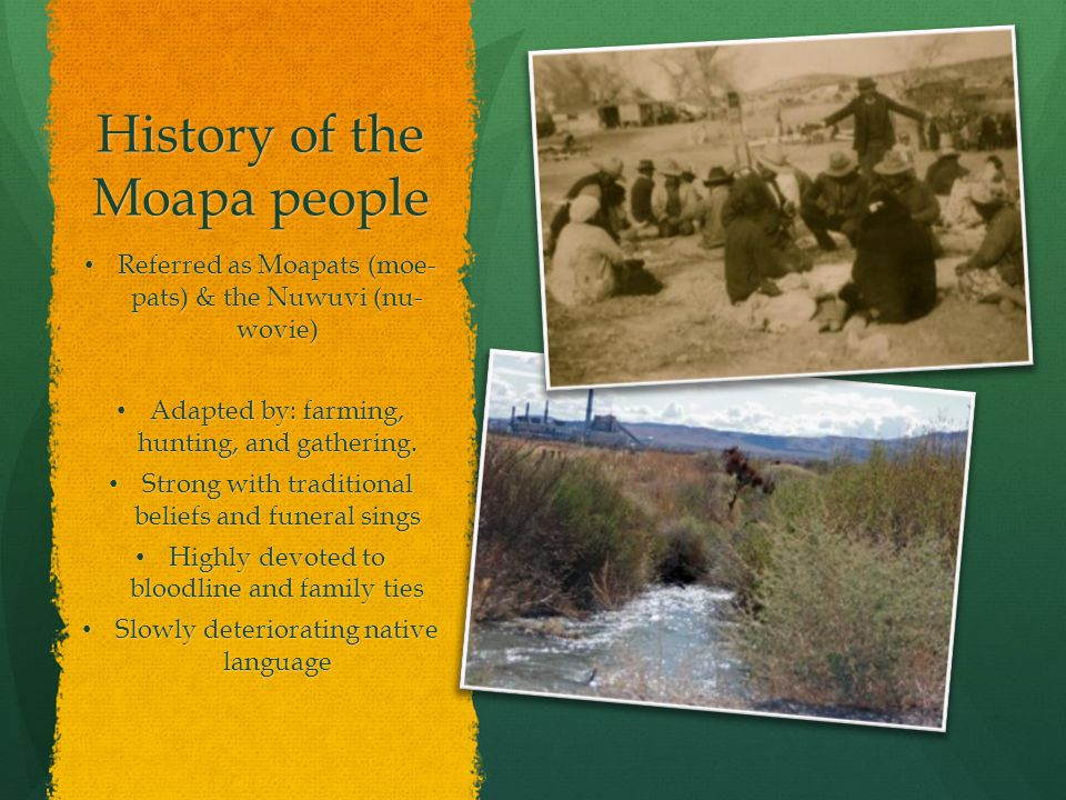 History of the Moapa people Referred as Moapats (moe- pats) & the Nuwuvi (nu- wovie) Referred as Moapats (moe- pats) & the Nuwuvi (nu- wovie) Adapted by: farming, hunting, and gathering.