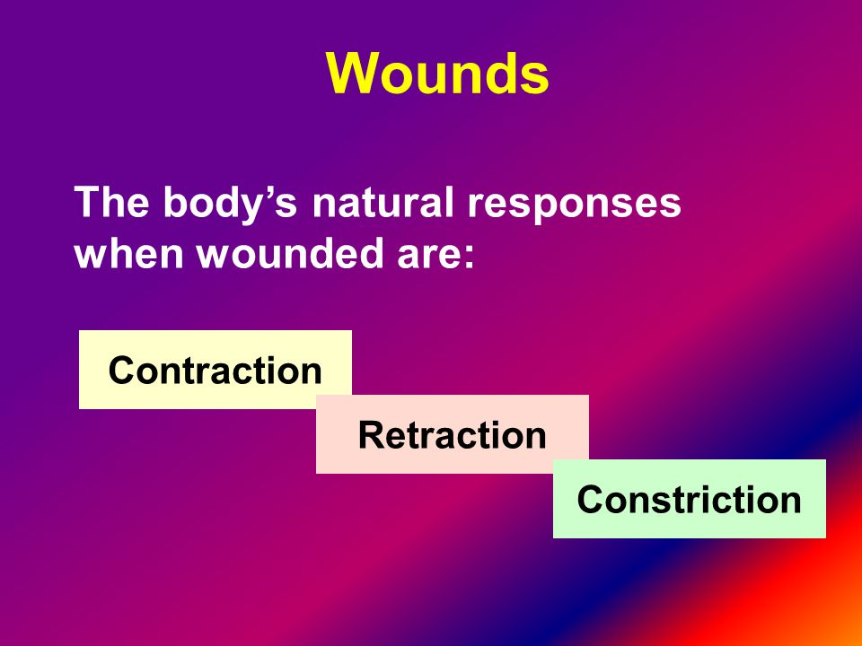 The body's natural responses when wounded are: Contraction Retraction Constriction Wounds