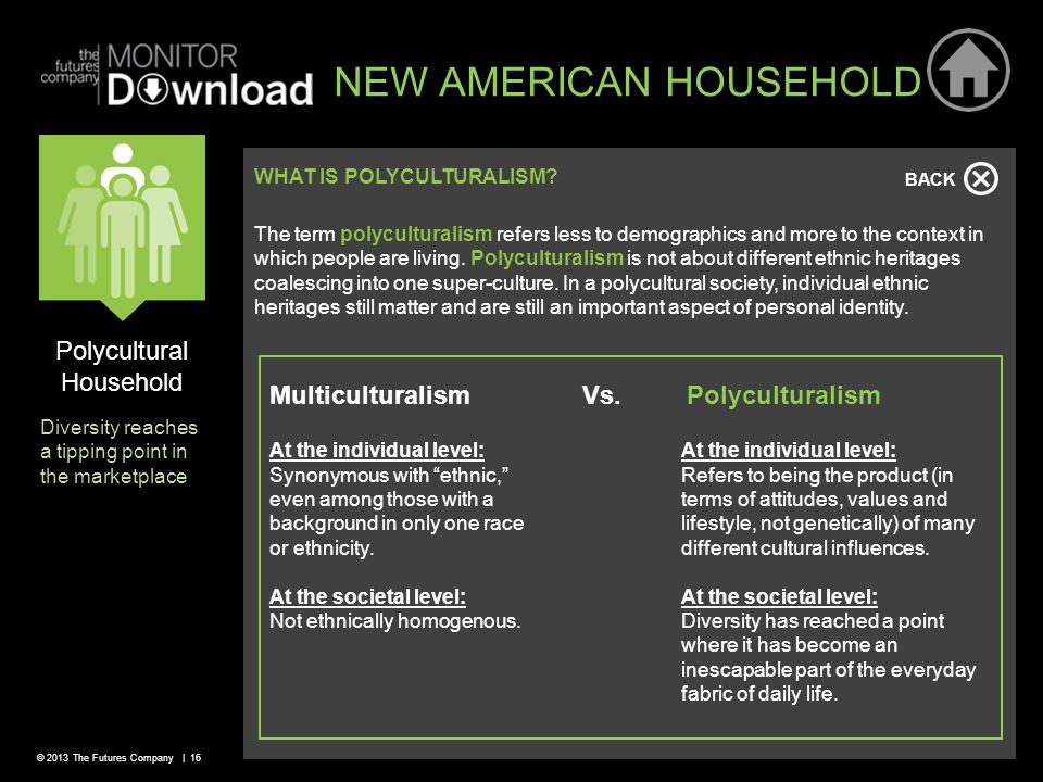 © 2013 The Futures Company | 16 Polycultural Household Diversity reaches a tipping point in the marketplace NEW AMERICAN HOUSEHOLD WHAT IS POLYCULTURALISM.