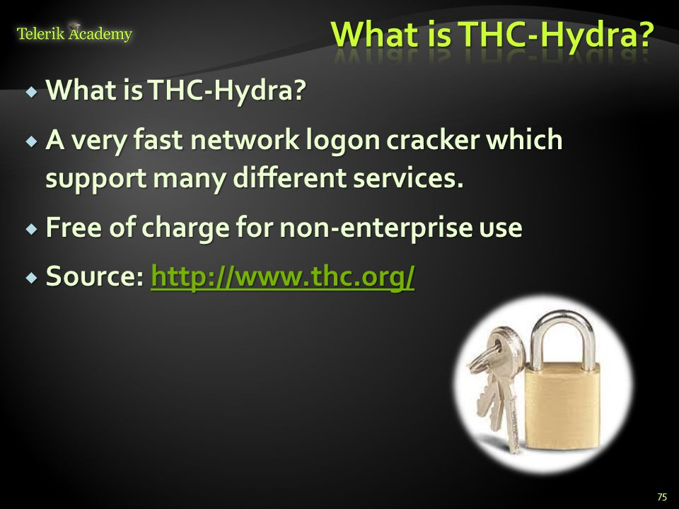  What is THC-Hydra?  A very fast network logon cracker which support many different services.  Free of charge for non-enterprise use  Source: http