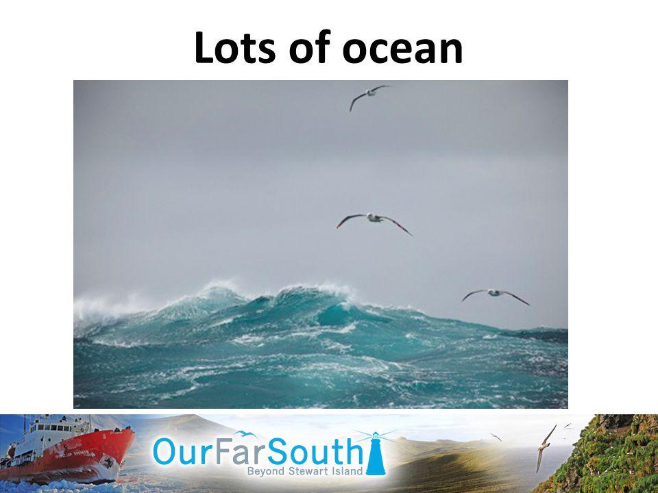 Lots of ocean