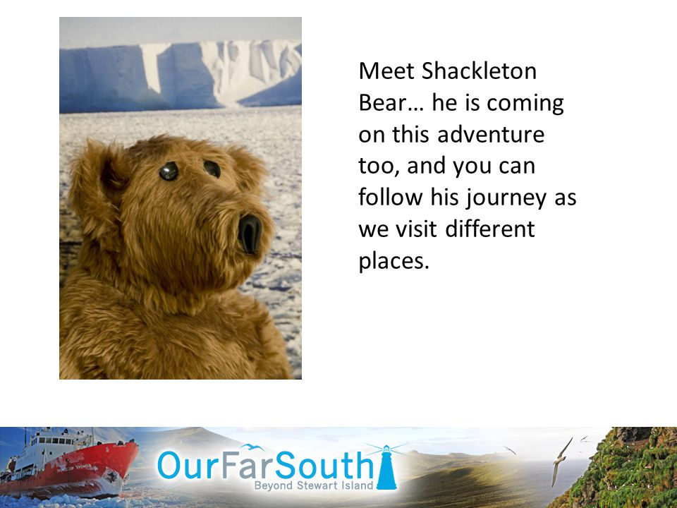 Meet Shackleton Bear… he is coming on this adventure too, and you can follow his journey as we visit different places.