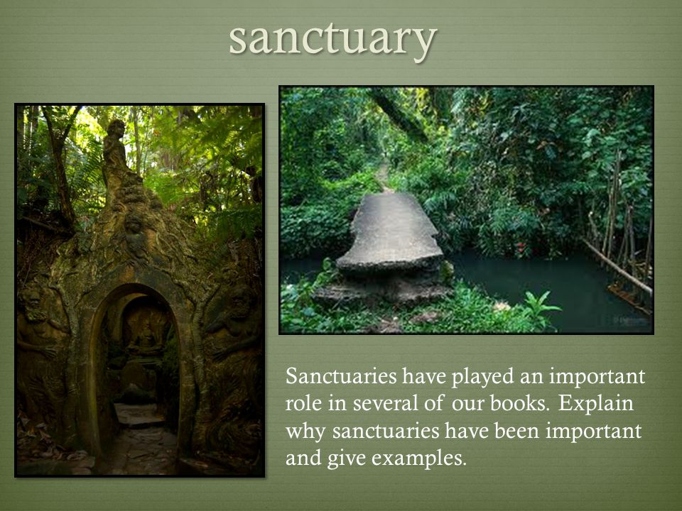sanctuary Sanctuaries have played an important role in several of our books.
