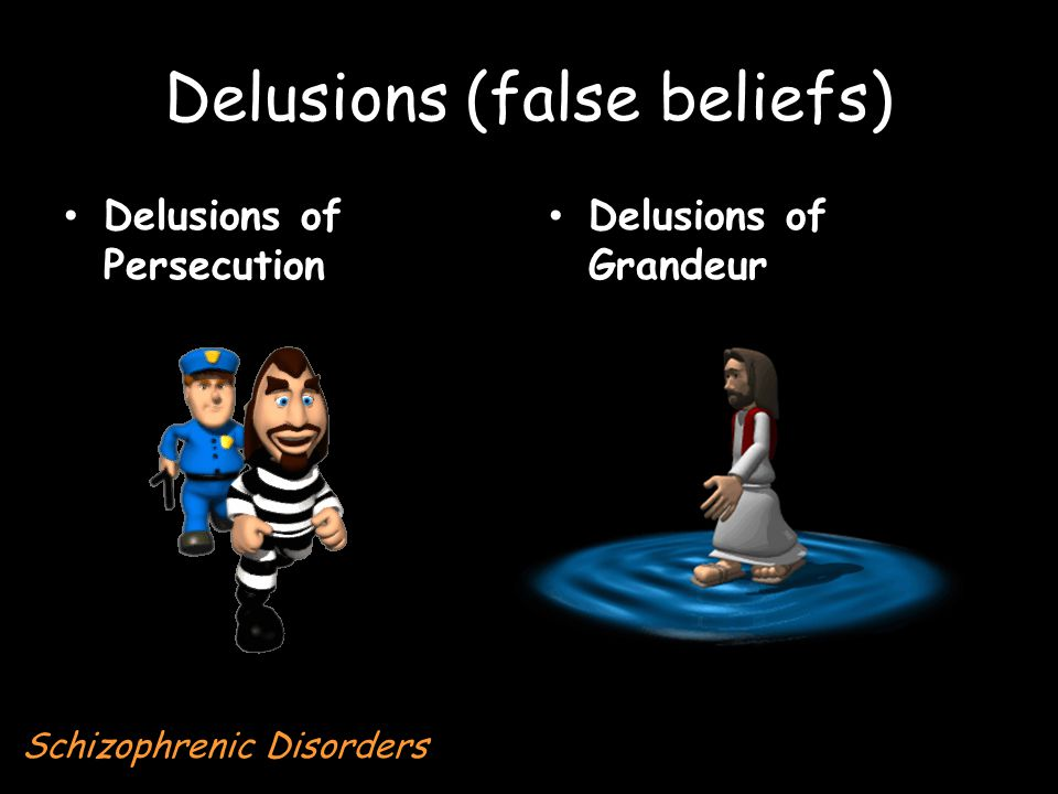 Delusions (false beliefs) Delusions of Persecution Delusions of Grandeur Schizophrenic Disorders