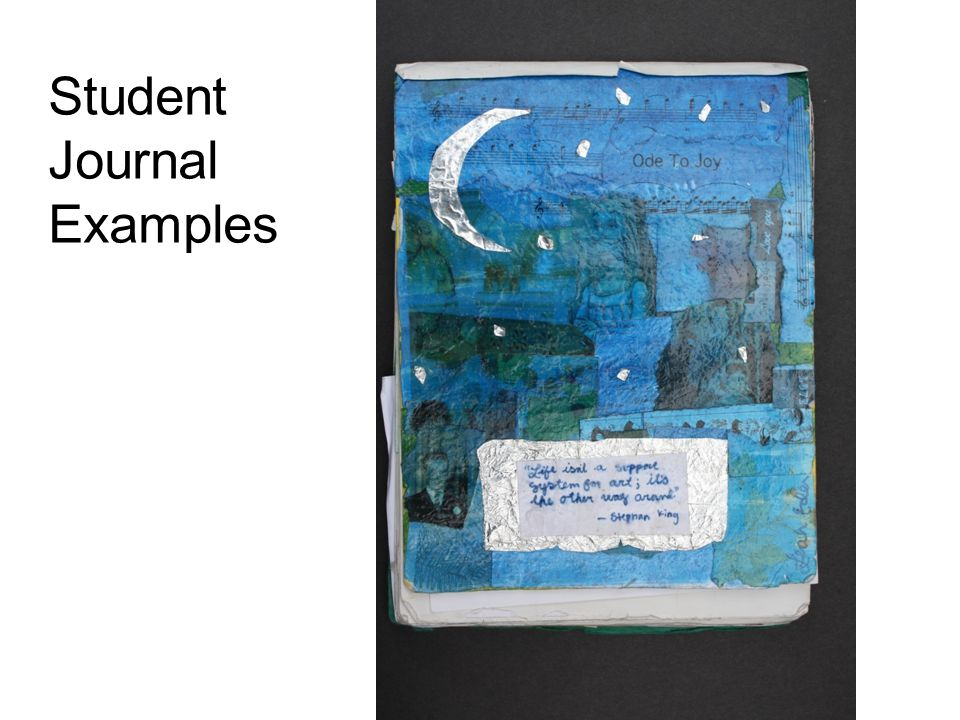 Student Journal Examples