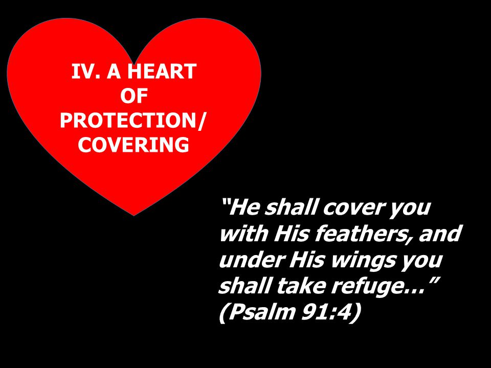 """IV. A HEART OF PROTECTION/ COVERING """"He shall cover you with His feathers, and under His wings you shall take refuge…"""" (Psalm 91:4)"""