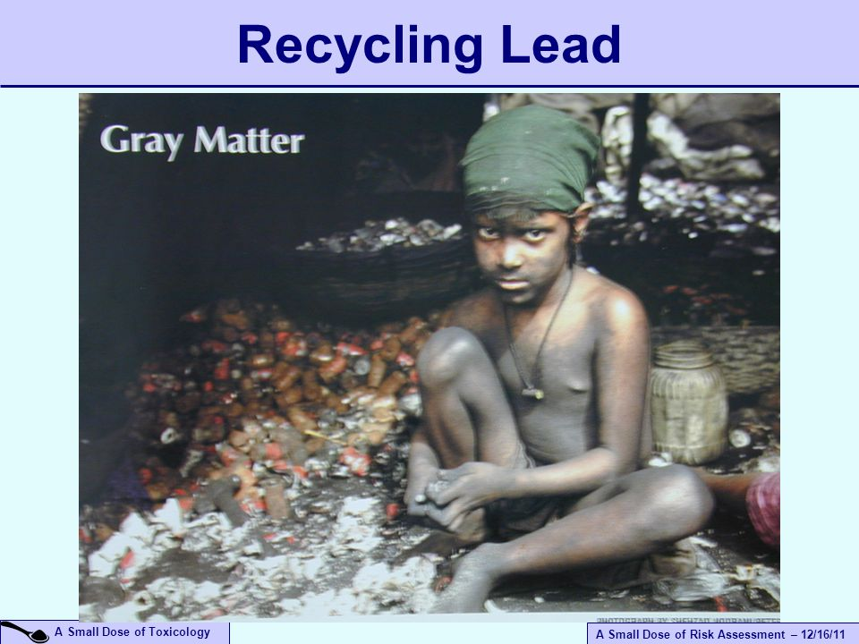 A Small Dose of Risk Assessment – 12/16/11 A Small Dose of Toxicology Recycling Lead