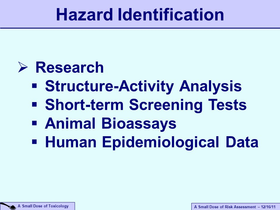 A Small Dose of Risk Assessment – 12/16/11 A Small Dose of Toxicology Hazard Identification  Research  Structure-Activity Analysis  Short-term Screening Tests  Animal Bioassays  Human Epidemiological Data