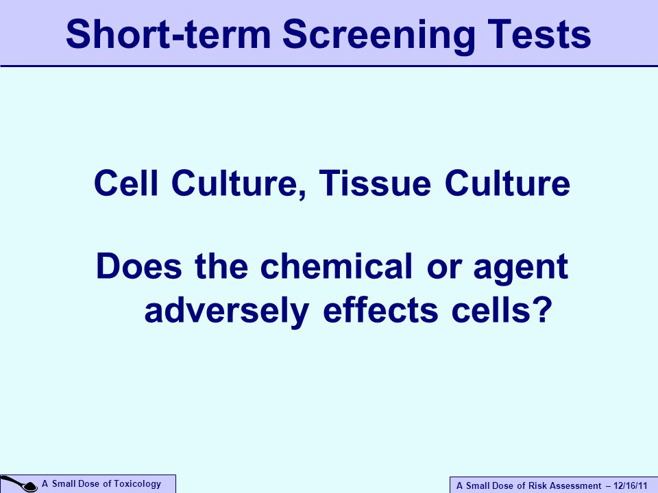 A Small Dose of Risk Assessment – 12/16/11 A Small Dose of Toxicology Short-term Screening Tests Cell Culture, Tissue Culture Does the chemical or agent adversely effects cells