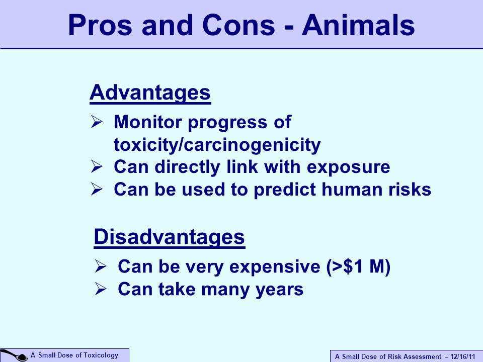 A Small Dose of Risk Assessment – 12/16/11 A Small Dose of Toxicology Pros and Cons - Animals Advantages  Monitor progress of toxicity/carcinogenicity  Can directly link with exposure  Can be used to predict human risks Disadvantages  Can be very expensive (>$1 M)  Can take many years