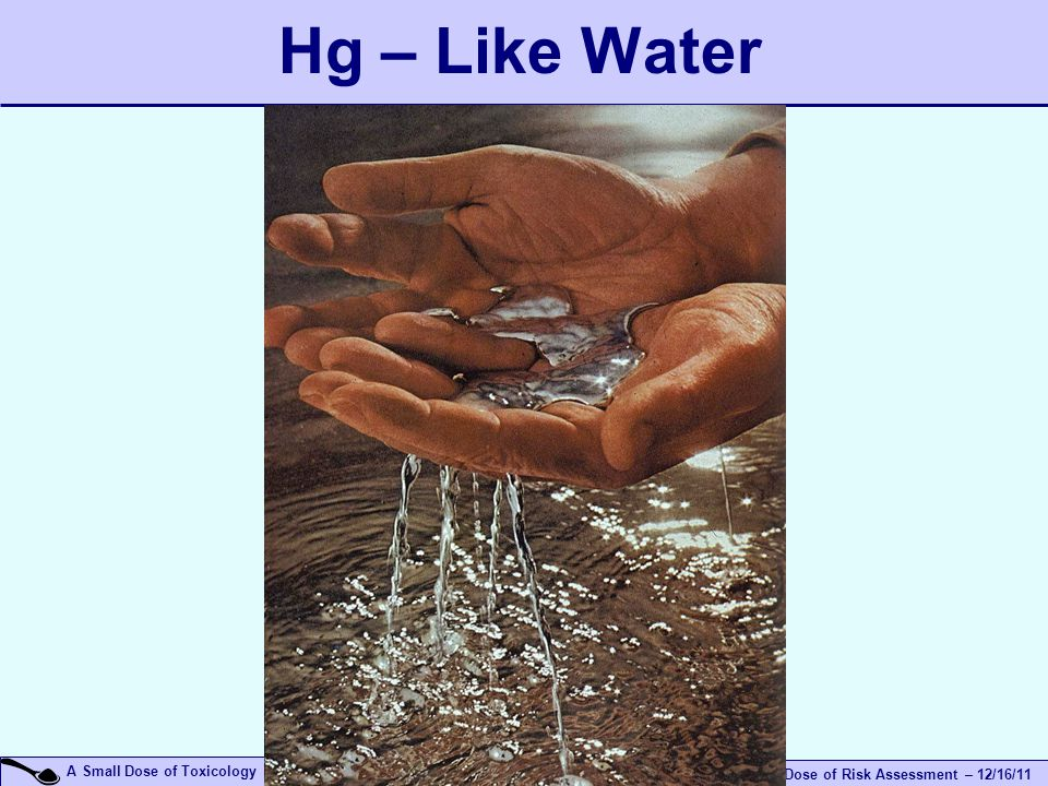 A Small Dose of Risk Assessment – 12/16/11 A Small Dose of Toxicology Hg – Like Water