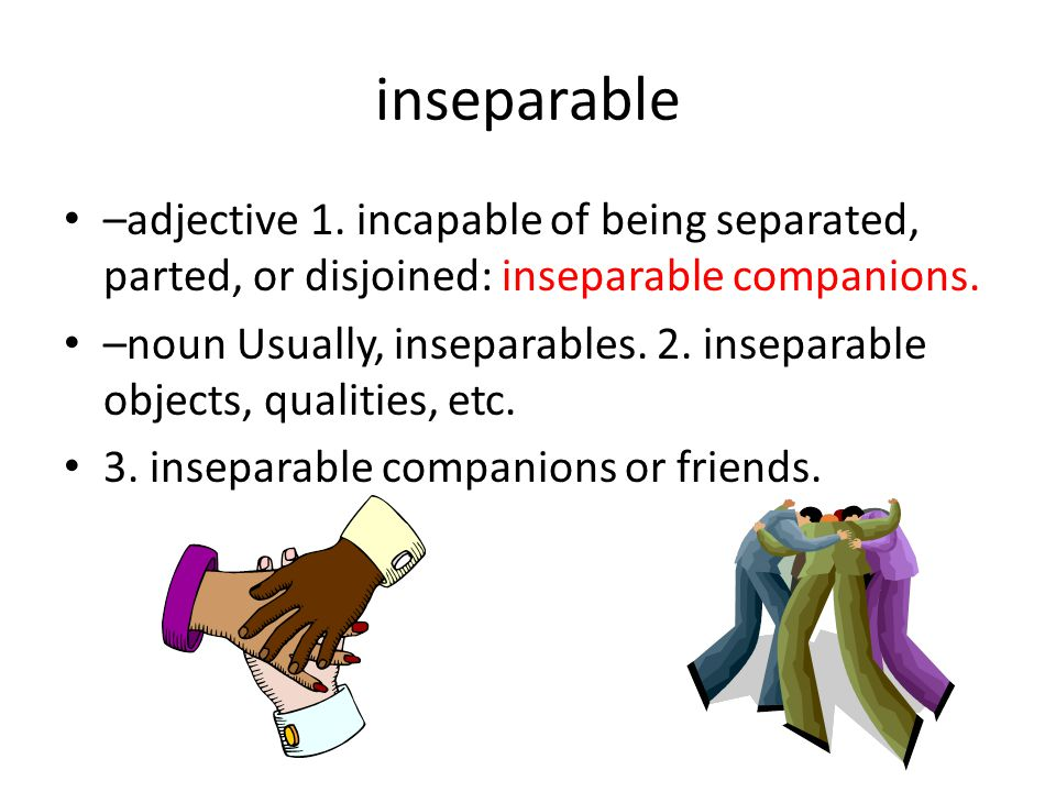 inseparable –adjective 1.
