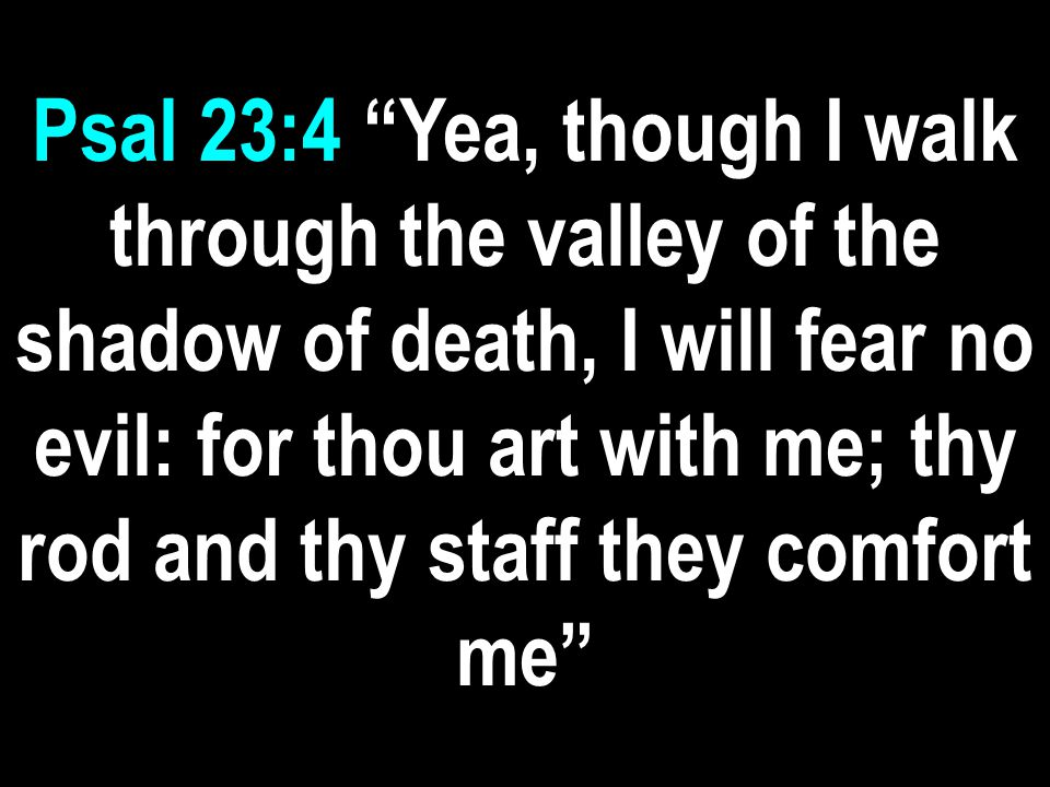 Psal 23:4 Yea, though I walk through the valley of the shadow of death, I will fear no evil: for thou art with me; thy rod and thy staff they comfort me