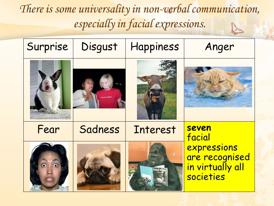 There is some universality in non-verbal communication, especially in facial expressions. SurpriseDisgustHappinessAnger FearSadnessInterest seven faci