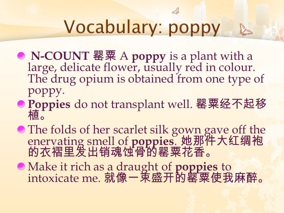 N-COUNT 罂粟 A poppy is a plant with a large, delicate flower, usually red in colour.