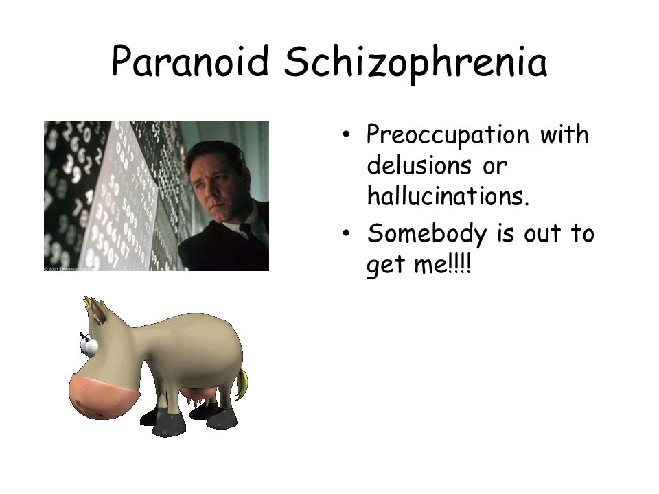 Paranoid Schizophrenia Preoccupation with delusions or hallucinations.
