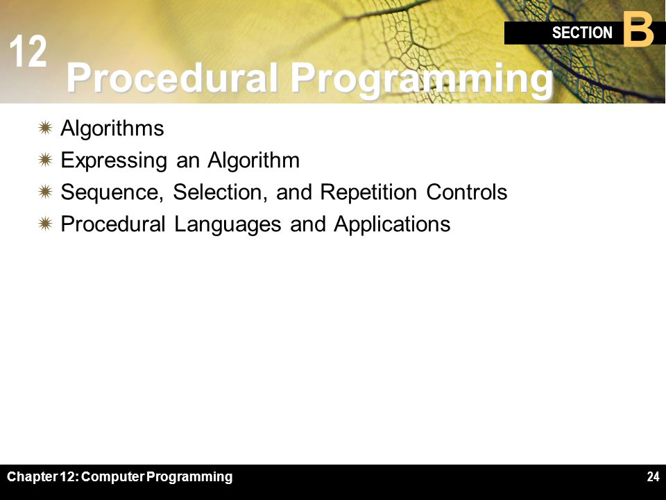 12 SECTION B Chapter 12: Computer Programming24 Procedural Programming  Algorithms  Expressing an Algorithm  Sequence, Selection, and Repetition Controls  Procedural Languages and Applications