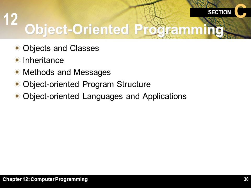12 SECTION C Chapter 12: Computer Programming36 Object-Oriented Programming  Objects and Classes  Inheritance  Methods and Messages  Object-oriented Program Structure  Object-oriented Languages and Applications