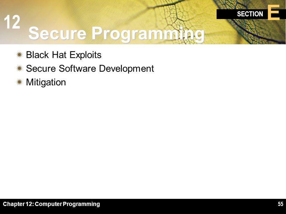 12 SECTION E Chapter 12: Computer Programming55 Secure Programming  Black Hat Exploits  Secure Software Development  Mitigation