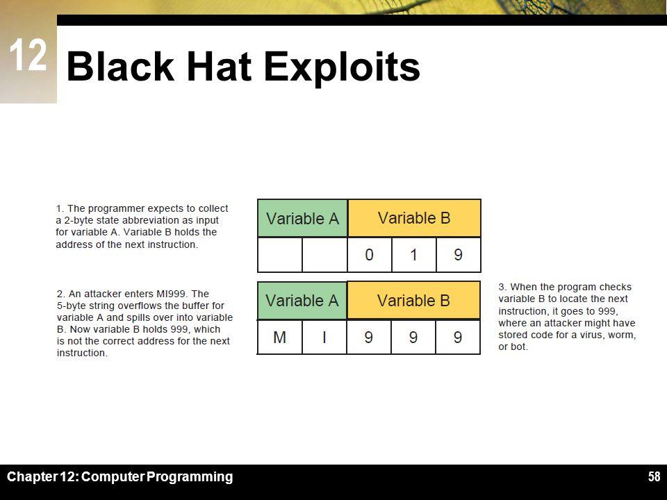 12 Black Hat Exploits Chapter 12: Computer Programming58
