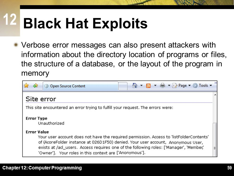 12 Chapter 12: Computer Programming59 Black Hat Exploits  Verbose error messages can also present attackers with information about the directory location of programs or files, the structure of a database, or the layout of the program in memory