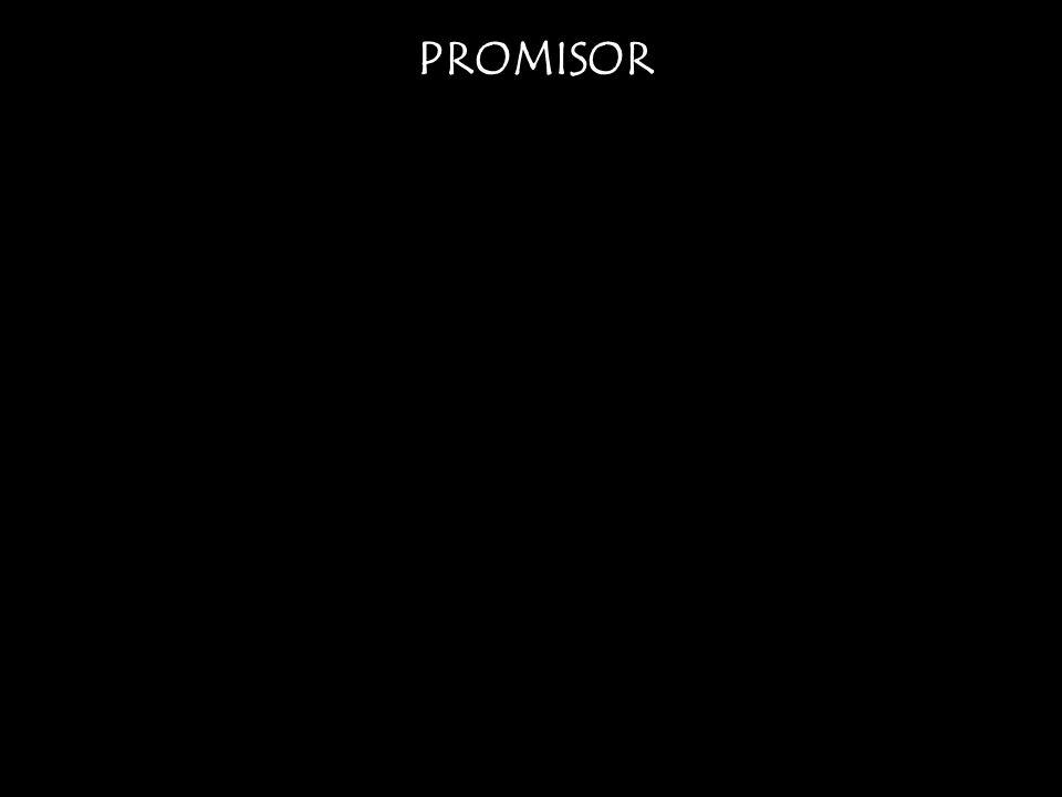 PROMISOR