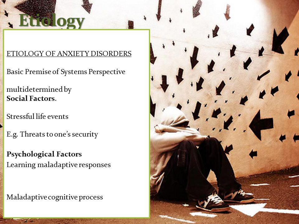 ETIOLOGY OF ANXIETY DISORDERS Basic Premise of Systems Perspective multidetermined by Social Factors.