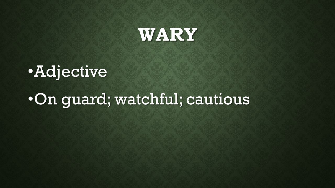 WARY Adjective Adjective On guard; watchful; cautious On guard; watchful; cautious