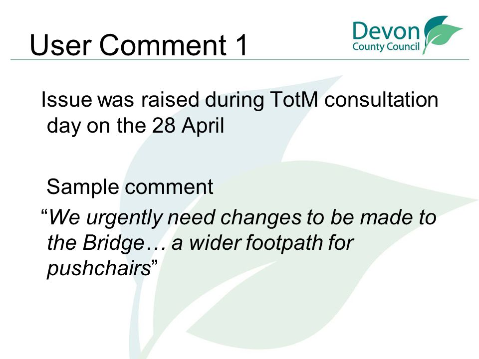 """User Comment 1 Issue was raised during TotM consultation day on the 28 April Sample comment """"We urgently need changes to be made to the Bridge… a wide"""