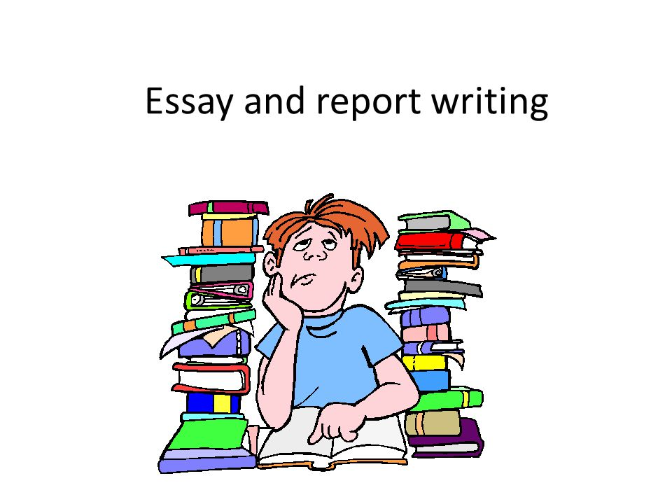 Essay and report writing
