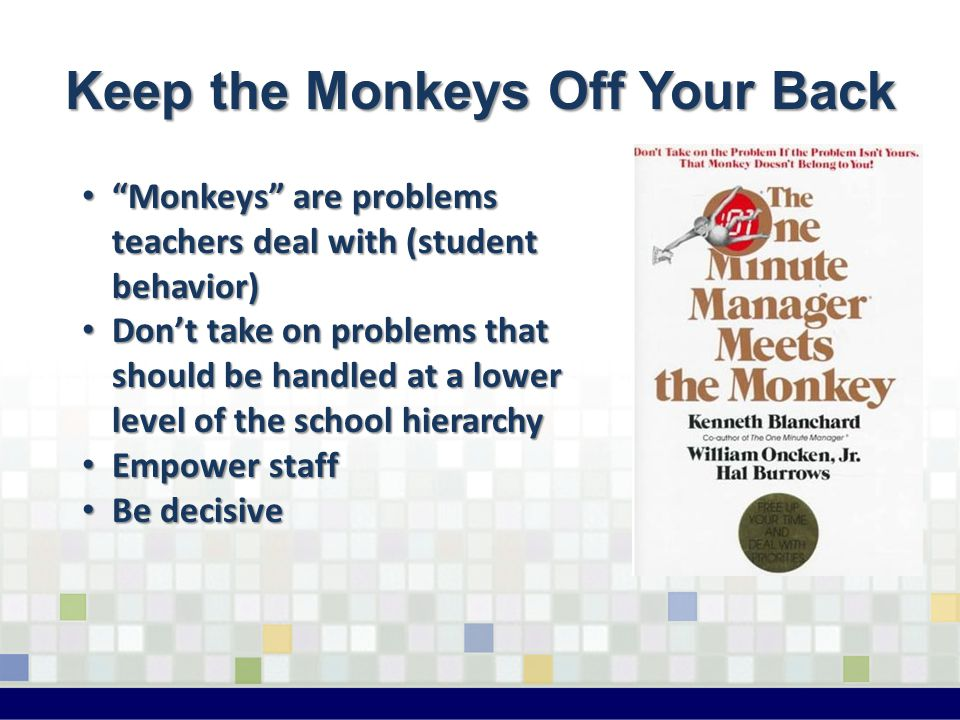 Keep the Monkeys Off Your Back Monkeys are problems teachers deal with (student behavior) Monkeys are problems teachers deal with (student behavior) Don't take on problems that should be handled at a lower level of the school hierarchy Don't take on problems that should be handled at a lower level of the school hierarchy Empower staff Empower staff Be decisive Be decisive