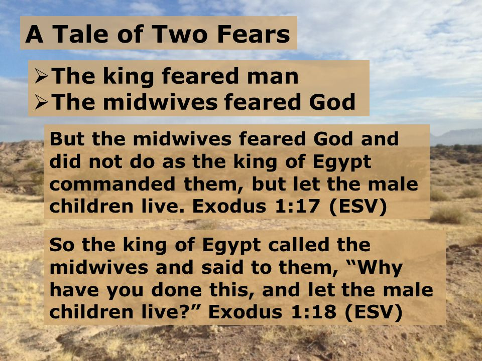 A Tale of Two Fears  The king feared man  The midwives feared God But the midwives feared God and did not do as the king of Egypt commanded them, but let the male children live.