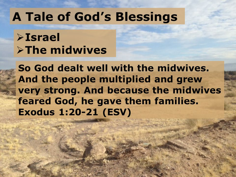 A Tale of God's Blessings  Israel  The midwives So God dealt well with the midwives.