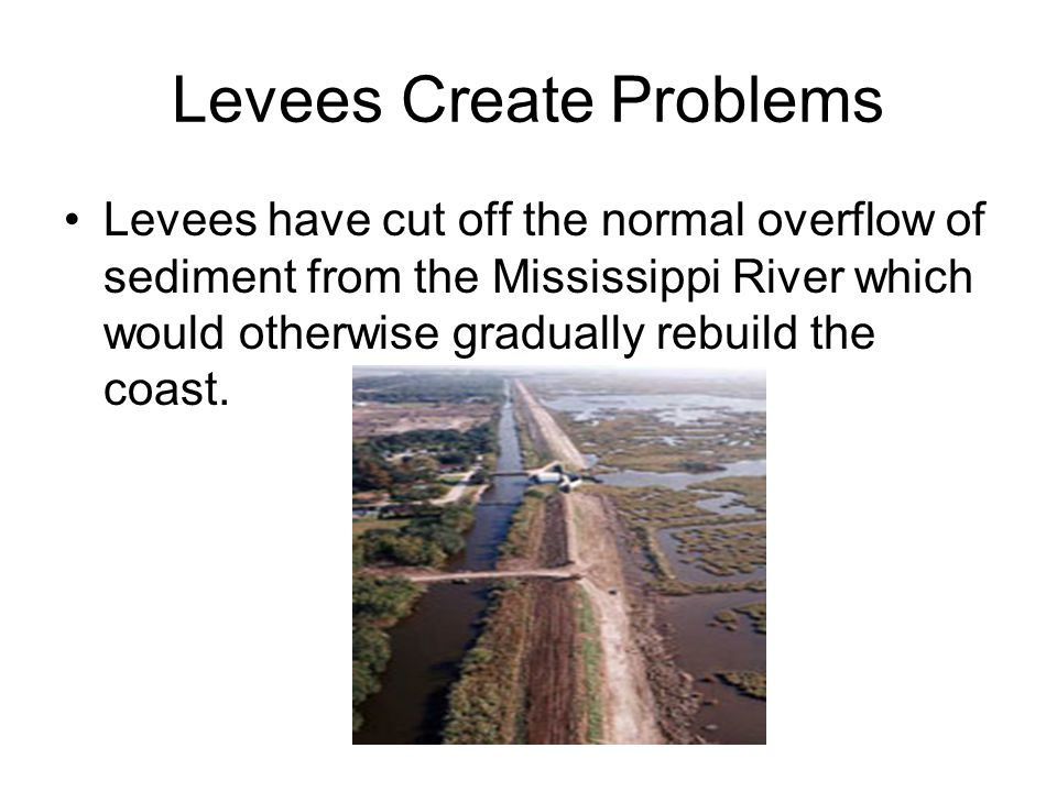 Levees Create Problems Levees have cut off the normal overflow of sediment from the Mississippi River which would otherwise gradually rebuild the coast.
