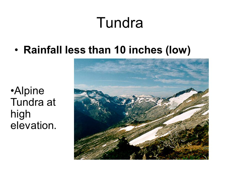 Tundra Rainfall less than 10 inches (low) Alpine Tundra at high elevation.